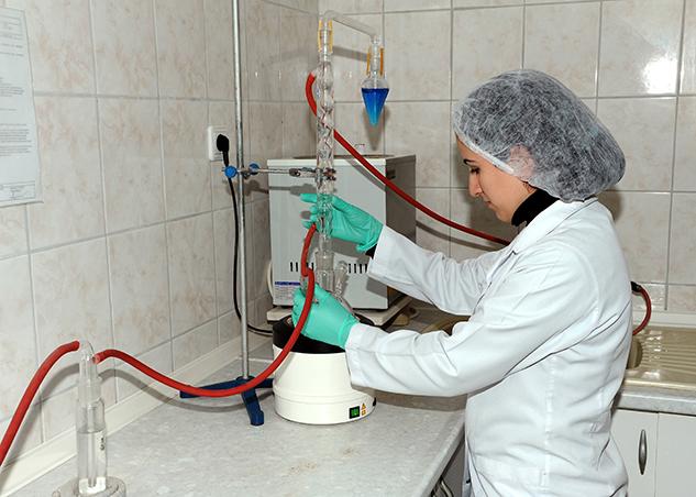 11-Laboratory